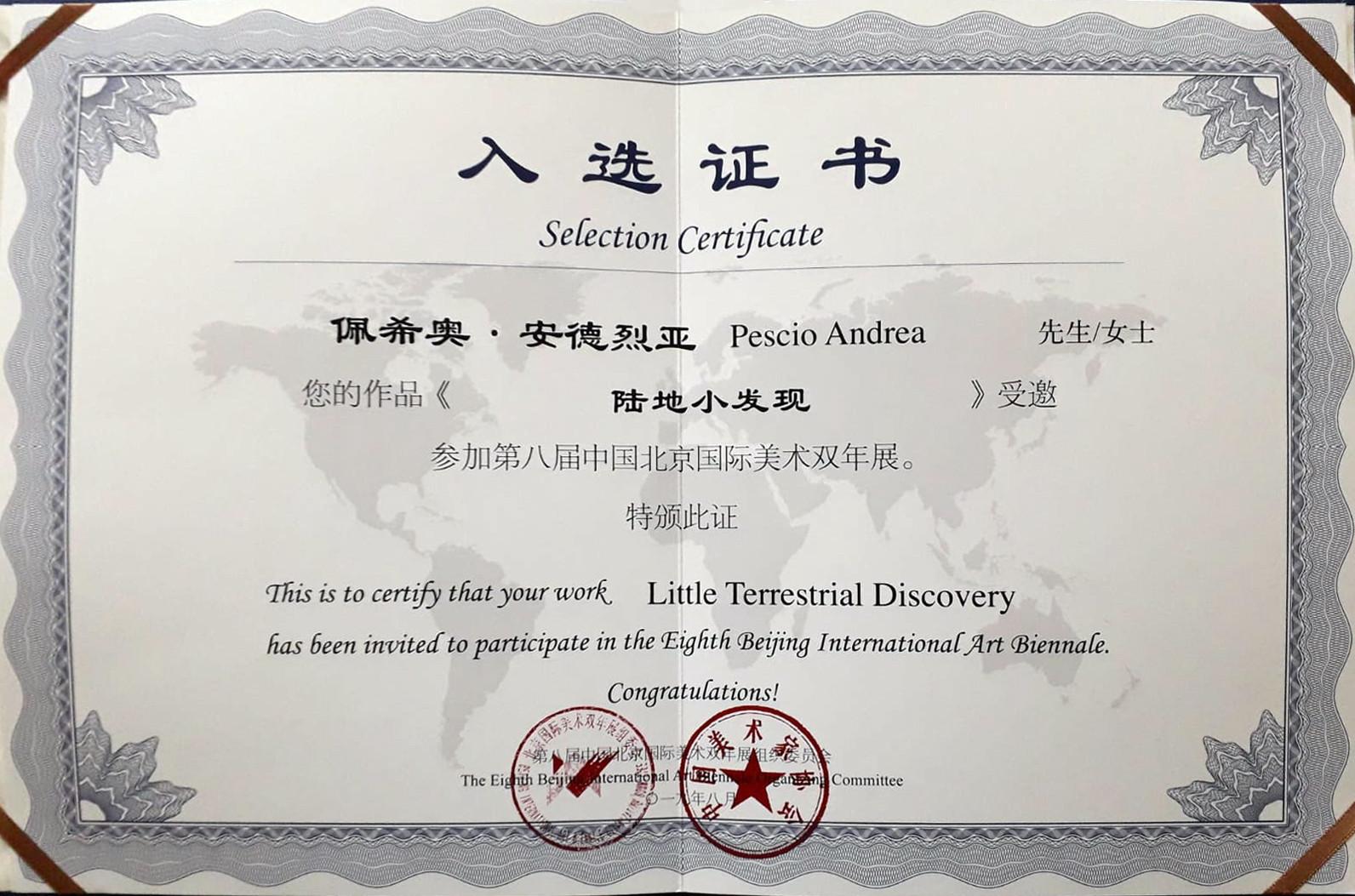 Il certificato di partecipazione alla Biennale
