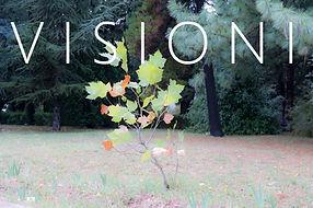 Visioni.jpg