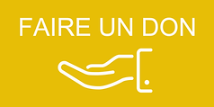 Bouton Site Faire un don Jaune.png