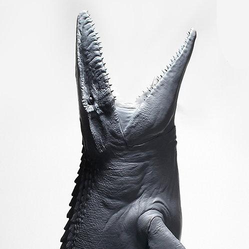 Mosasaur Resin kits