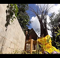 HAIKORPOS - Fotografia Mariana Rotili.jp