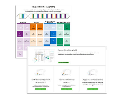 cliftonsstrengths-simpelxity-inventaire.JPG