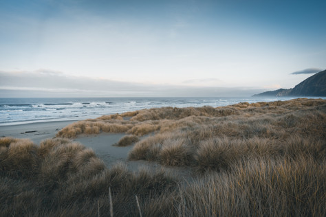 Oregon-6.jpg