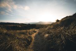 Oregon-12.jpg