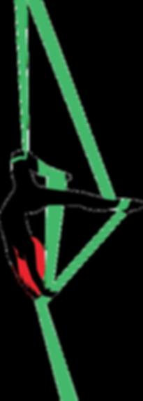 aerialist silhouette