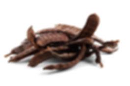 beans-72058_960_720.jpg