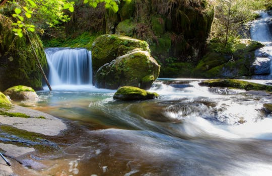 Beautiful flowing waterfall and stream in nature
