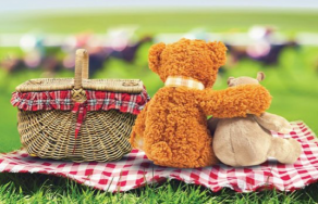 Teddy bear picnic - volunteers needed
