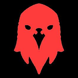Logo Flyve_png4.png