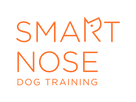 Smart Nose Logo Final Orange-01.png