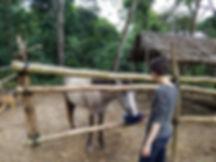 Tambo Ilusion - Alison with Horse 2.jpg