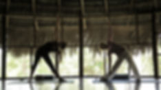Johanne Delisle - Tambo Ilusion - Clase