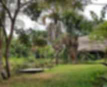 Tambo laguna Tambo Ilusion..jpg