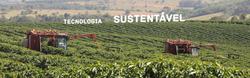 SH Coffees - Tecnologia Sustentável