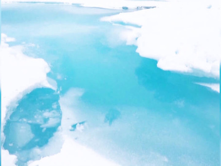 Last Intact Ice Shelf in Canadian Arctic Has Collapsed