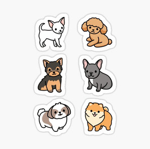 Small Dog Pack