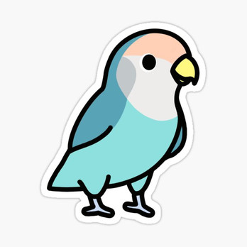 Blue Peach-Faced Lovebird