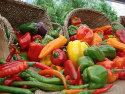 Fruits-et-legumes-(9)