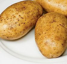 Pommes de terre rondes au four La Légumerie