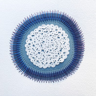 Organism fig. 14