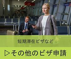 ★サービス その他のビザ.png