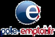 Logo-pole-emploi-transparent_edited.png