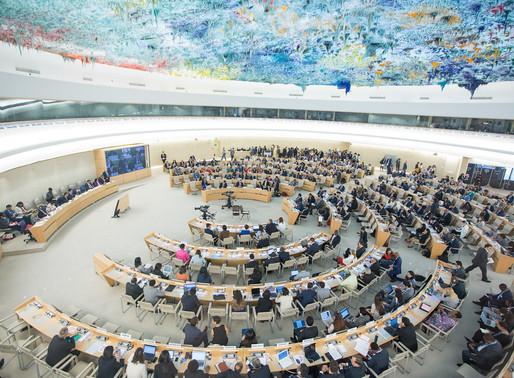 El Consejo de Derechos Humanos en la política exterior argentina