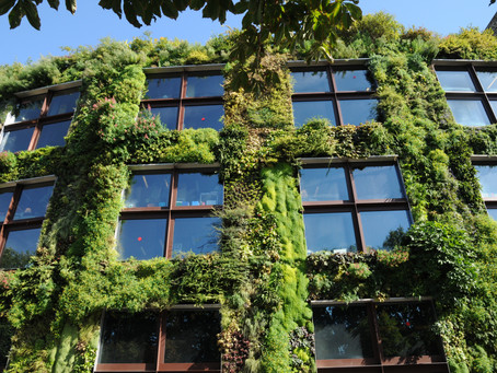 Building Green Doesn't Cost More, Report Says