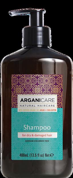 argan oil hair care products shampoo