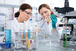 Experienced researchers