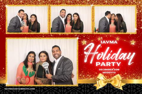 IAVMA Holiday Party 2018