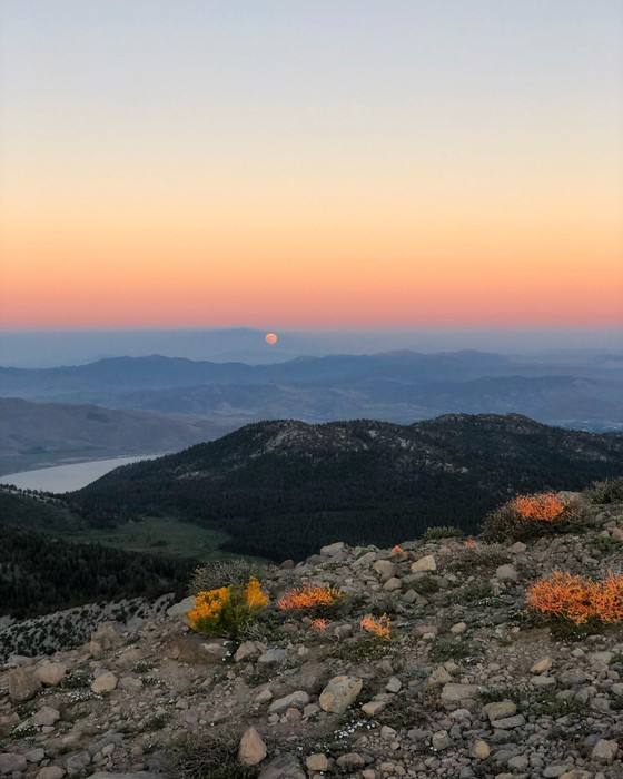 Candice Burt's Unsupported Tahoe Rim Trail FKT