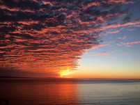 One of the most spectacular sunsets I've ever seen over the Pacific from the Douglas Family Preserve in Santa Barbara