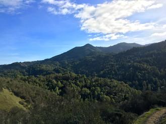 Sleeping Beauty, Mount Tamalpais from Yolanda Trail