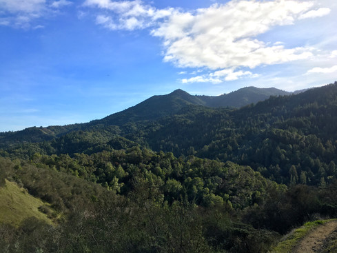 Sleeping Beauty, Mount Tamalpais from Yolanda Trail