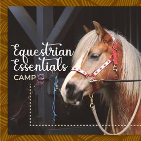 Rise Equestrian Social Media March Camp-