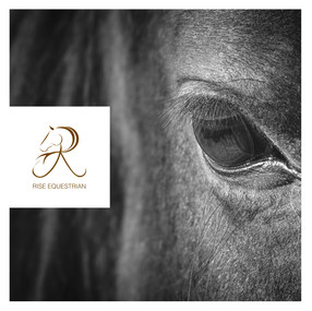 Rise Equestrian Social Media 2021 Feb-11