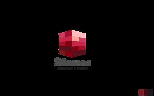 Stinsons Logo Proposal-05.png