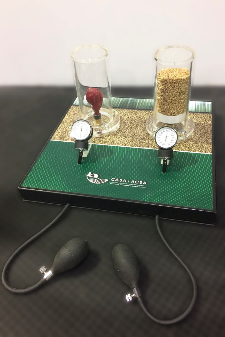 Grain and Lung Safety Education Display