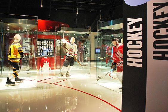 Sport museum installation