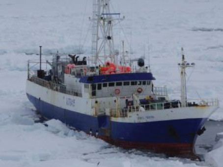 SHIP OF (COLD) FOOLS RESCUED AT LAST