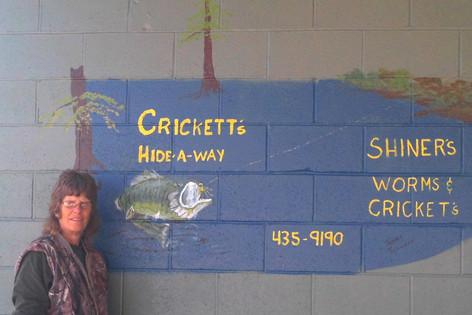 Crickett's Hide-A-Way