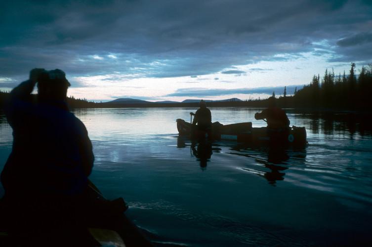Porcupine dusk paddle
