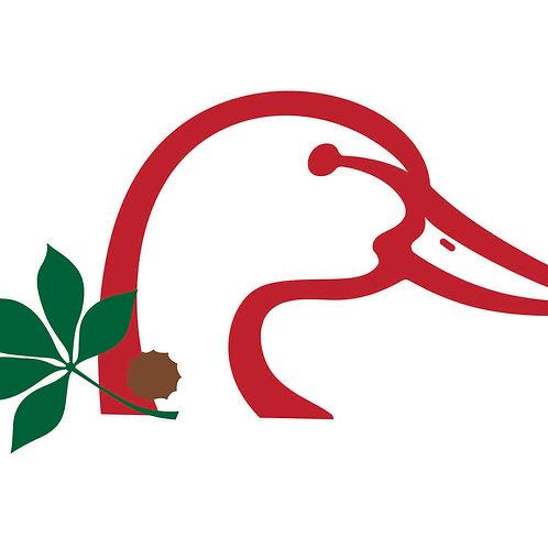OSU Ducks Unlimited Decal