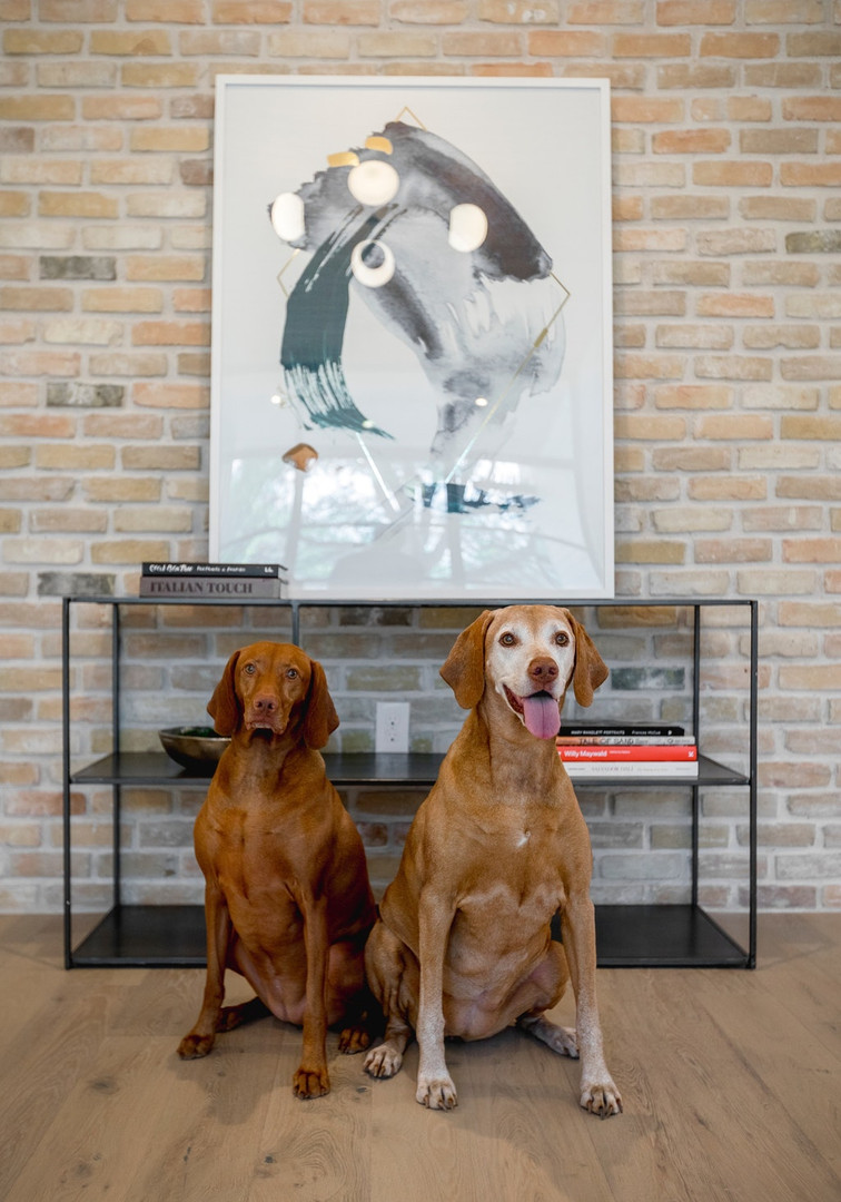 041-335507-Puppies Portrait_8501851.jpg