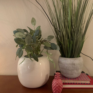 pineapple-project-image-plants.jpg