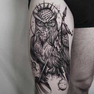 owl big.jpg