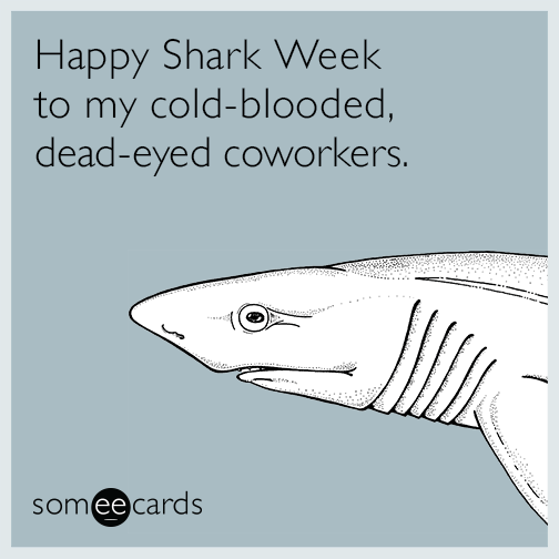 Someecards- Shark Week