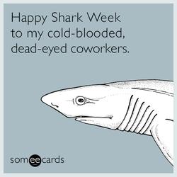 Someecards- Shark Week