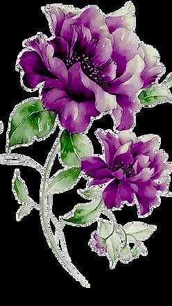 Plantas (5).png